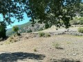 kemer-ulupinar-for-emergency-sale-25-000-m2-field-small-4