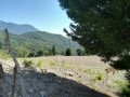 kemer-ulupinar-for-emergency-sale-25-000-m2-field-small-1