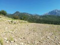 kemer-ulupinar-for-emergency-sale-25-000-m2-field-small-6