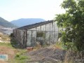 gazipasa-for-sale-field-7-acres-cobanlar-farm-small-8