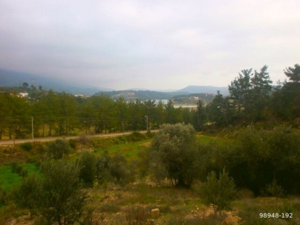 7454-m2-zero-olive-garden-on-the-road-just-outside-oymapinar-big-10