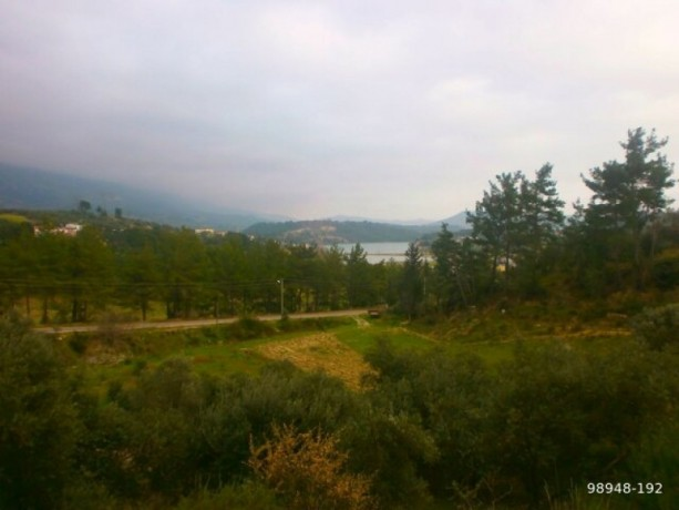 7454-m2-zero-olive-garden-on-the-road-just-outside-oymapinar-big-12