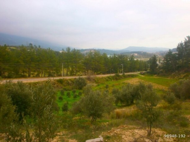 7454-m2-zero-olive-garden-on-the-road-just-outside-oymapinar-big-13