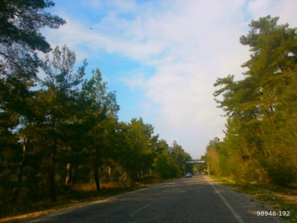 7454-m2-zero-olive-garden-on-the-road-just-outside-oymapinar-big-0