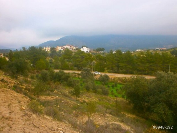 7454-m2-zero-olive-garden-on-the-road-just-outside-oymapinar-big-9