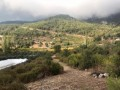 field-for-sale-in-kumluca-guzoren-village-3500m2-small-4