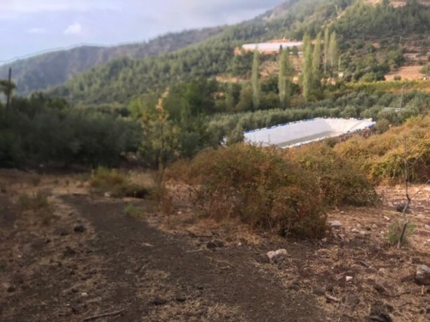 field-for-sale-in-kumluca-guzoren-village-3500m2-big-5
