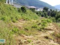 gazipasa-field-for-sale-8-acres-field-and-house-beyrebucak-small-3