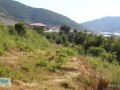gazipasa-field-for-sale-8-acres-field-and-house-beyrebucak-small-2