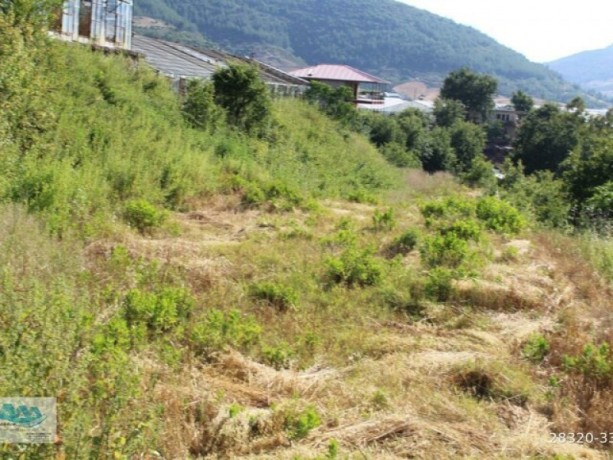 gazipasa-field-for-sale-8-acres-field-and-house-beyrebucak-big-3