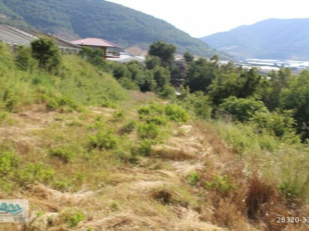gazipasa-field-for-sale-8-acres-field-and-house-beyrebucak-big-8