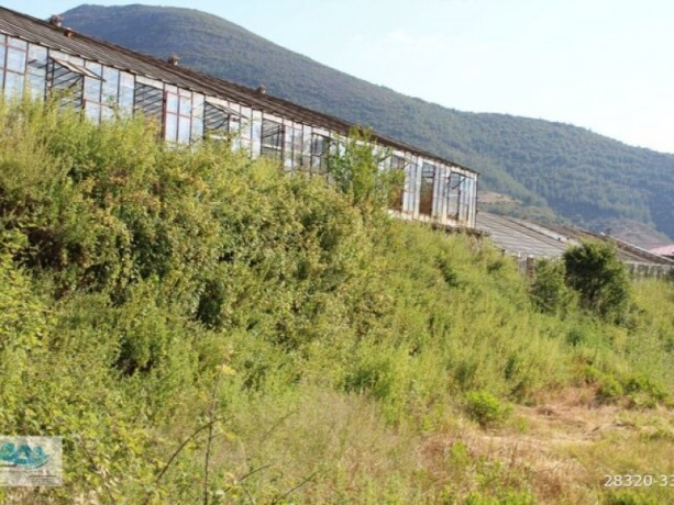 gazipasa-field-for-sale-8-acres-field-and-house-beyrebucak-big-4