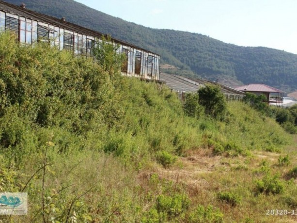 gazipasa-field-for-sale-8-acres-field-and-house-beyrebucak-big-7