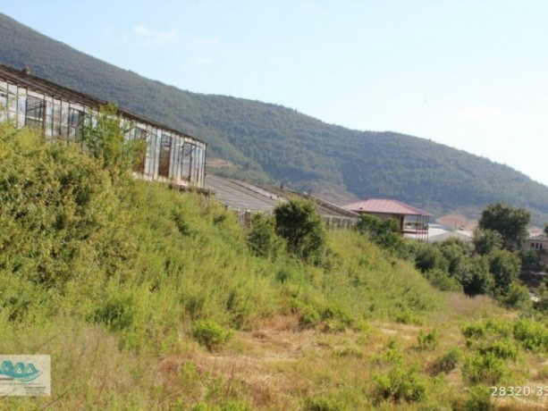 gazipasa-field-for-sale-8-acres-field-and-house-beyrebucak-big-6