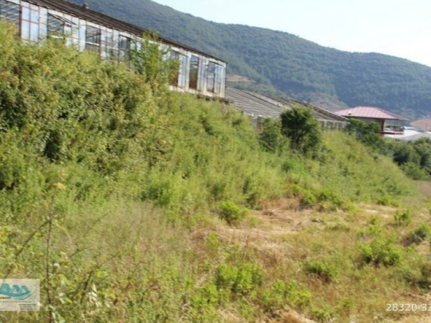 gazipasa-field-for-sale-8-acres-field-and-house-beyrebucak-big-5
