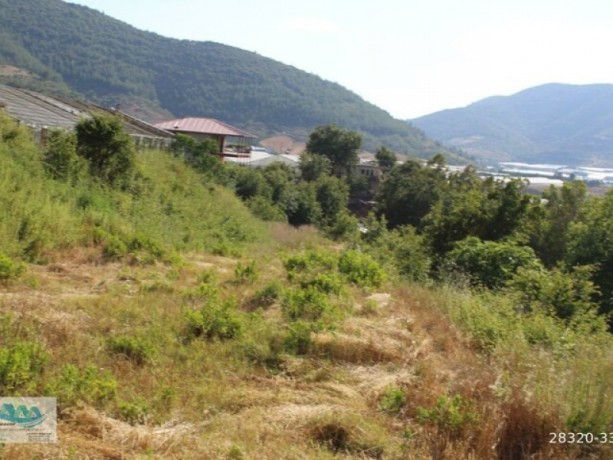gazipasa-field-for-sale-8-acres-field-and-house-beyrebucak-big-2
