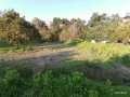 10-acres-of-land-in-demirtas-center-1-acre-of-shares-for-sale-small-5