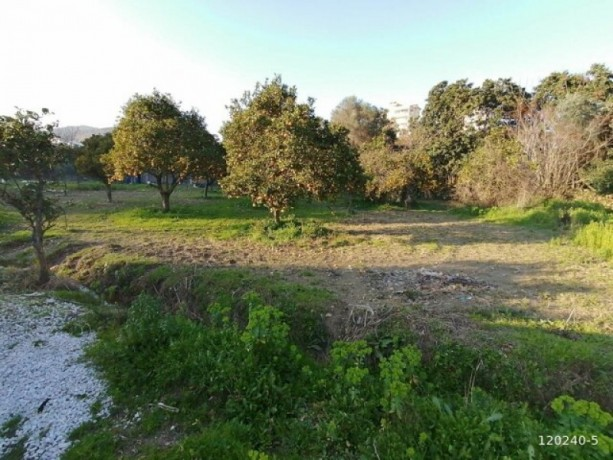 10-acres-of-land-in-demirtas-center-1-acre-of-shares-for-sale-big-2