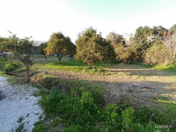 10-acres-of-land-in-demirtas-center-1-acre-of-shares-for-sale-big-3