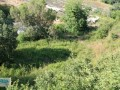 antalya-gazipasa-for-sale-field-7000-m2-small-8