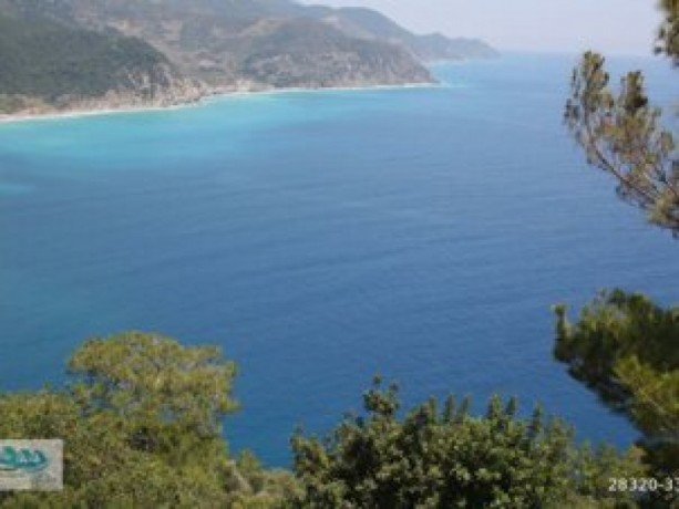antalya-gazipasa-for-sale-field-7000-m2-big-4
