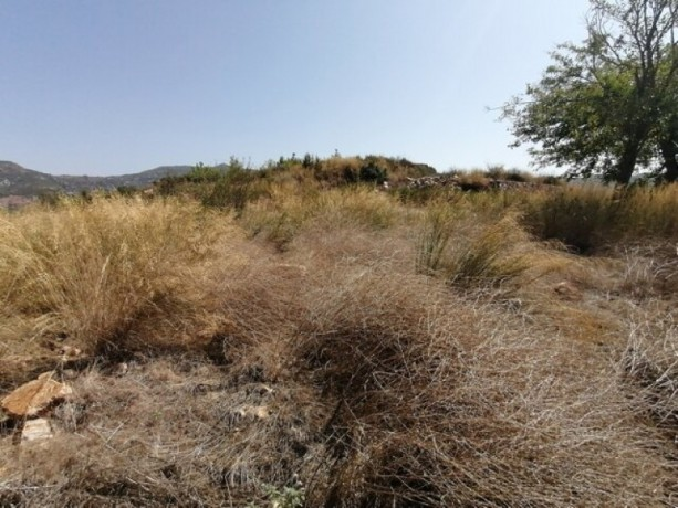 land-for-sale-in-alanya-aliefendi-village-with-magnificent-sea-views-big-7