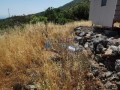 full-sea-nature-view-in-alanya-yenice-village-2655-m2-olive-garden-land-small-0