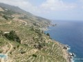 gazipasa-12-acres-of-bananas-in-zeytinada-turkish-mediterranean-sea-small-0