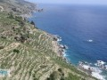 gazipasa-12-acres-of-bananas-in-zeytinada-turkish-mediterranean-sea-small-4