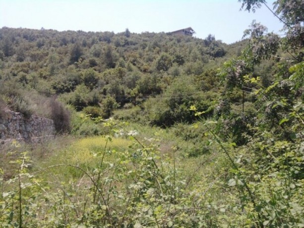 land-for-sale-in-alanya-from-the-owner-960-m2-in-yesiloz-sea-sees-big-4