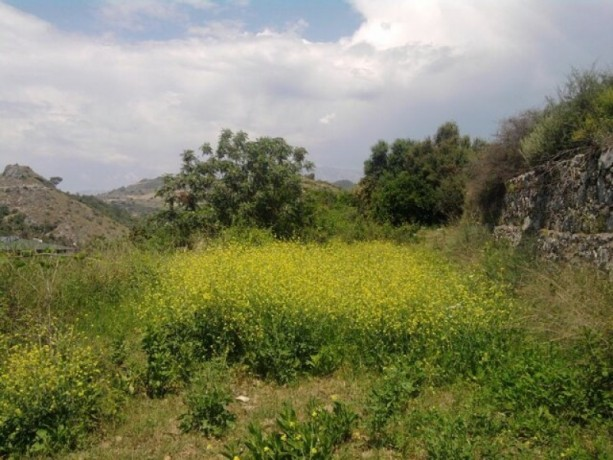 land-for-sale-in-alanya-from-the-owner-960-m2-in-yesiloz-sea-sees-big-2