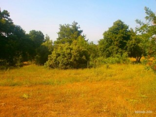 LAND IN KARACALAR VILLAGE QUALIFIED GARDEN