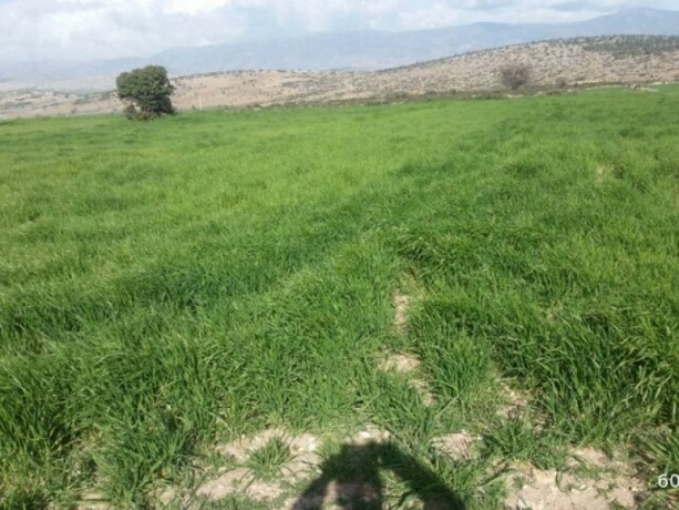 korkuteli-big-village-has-official-road-and-base-water-7310-mt-of-land-big-4