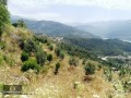 alanya-dimcayi-detached-parcel-with-2330m2-plot-small-3