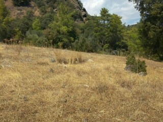 OLYMPOS BEACH HISTORIC 13.700 m2 DETACHED field for sale