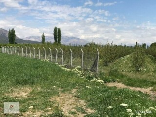 A profitable and profitable Apple garden and field