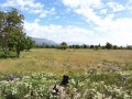 turkish-rural-village-high-11200-m2-land-suitable-for-greenhouse-small-0