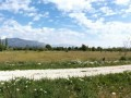 turkish-rural-village-high-11200-m2-land-suitable-for-greenhouse-small-2