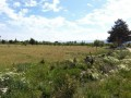 turkish-rural-village-high-11200-m2-land-suitable-for-greenhouse-small-5