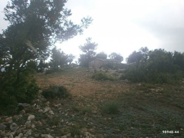 field-for-sale-antalya-manavgat-villages-yaylaalan-village-41000-m2-big-7