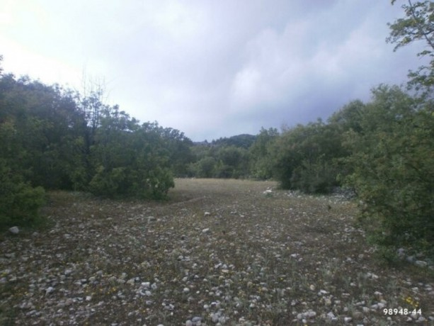field-for-sale-antalya-manavgat-villages-yaylaalan-village-41000-m2-big-3