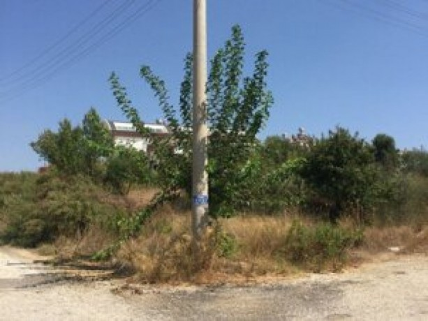 field-for-sale-antalya-manavgat-villages-yaylaalan-village-41000-m2-big-5