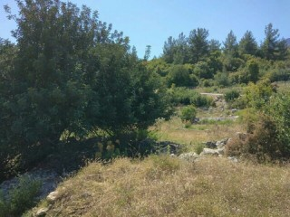 Antalya KUMLUCA OLYMPOS VILLAGE 7.292 M2 land for sale in YAZIDA