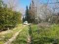 orange-garden-for-sale-antalya-manavgat-villages-karaoz-village-small-4