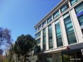 istanbul-kadikoy-erenkoy-top-office-for-rent-small-0