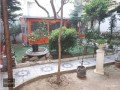 istanbul-besiktas-sinanpasa-rent-cafe-with-two-story-garden-in-poet-small-2
