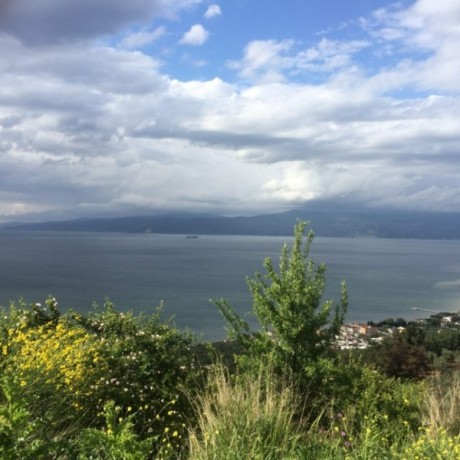 great-investment-opportunity-big-land-for-sale-in-bursa-turkey-big-3