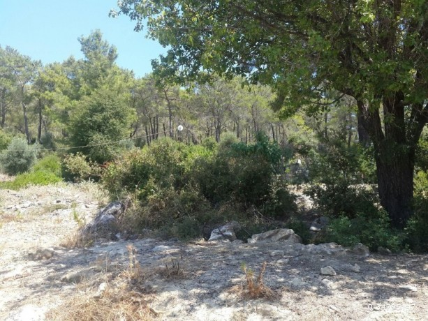 antalya-mavikent-sea-view-497m2-adrasan-road-imarli-land-for-sale-beach-big-0