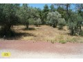 antalya-dosemealti-land-plot-for-sale-to-build-your-dream-house-mansion-small-18