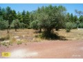 antalya-dosemealti-land-plot-for-sale-to-build-your-dream-house-mansion-small-19